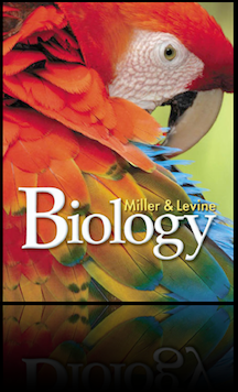 Tropical biology scholarships!