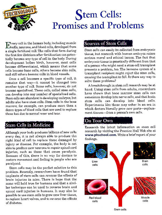 stem cell research controversy newspaper articles