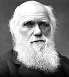 essay on what darwin never knew